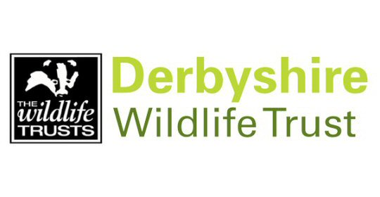 Derbyshire's wildlife receives Lottery grant to boost recovery